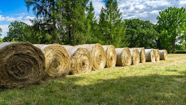 hay-bales-3526962__340