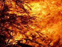 fire-3814159__340