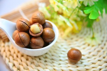 macadamia-nuts-1098170__340