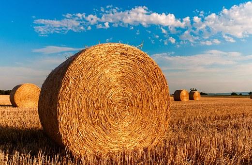 straw-bales-726976__340