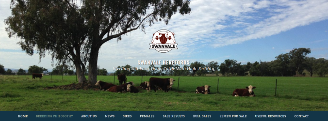 Swanvale Herefords website